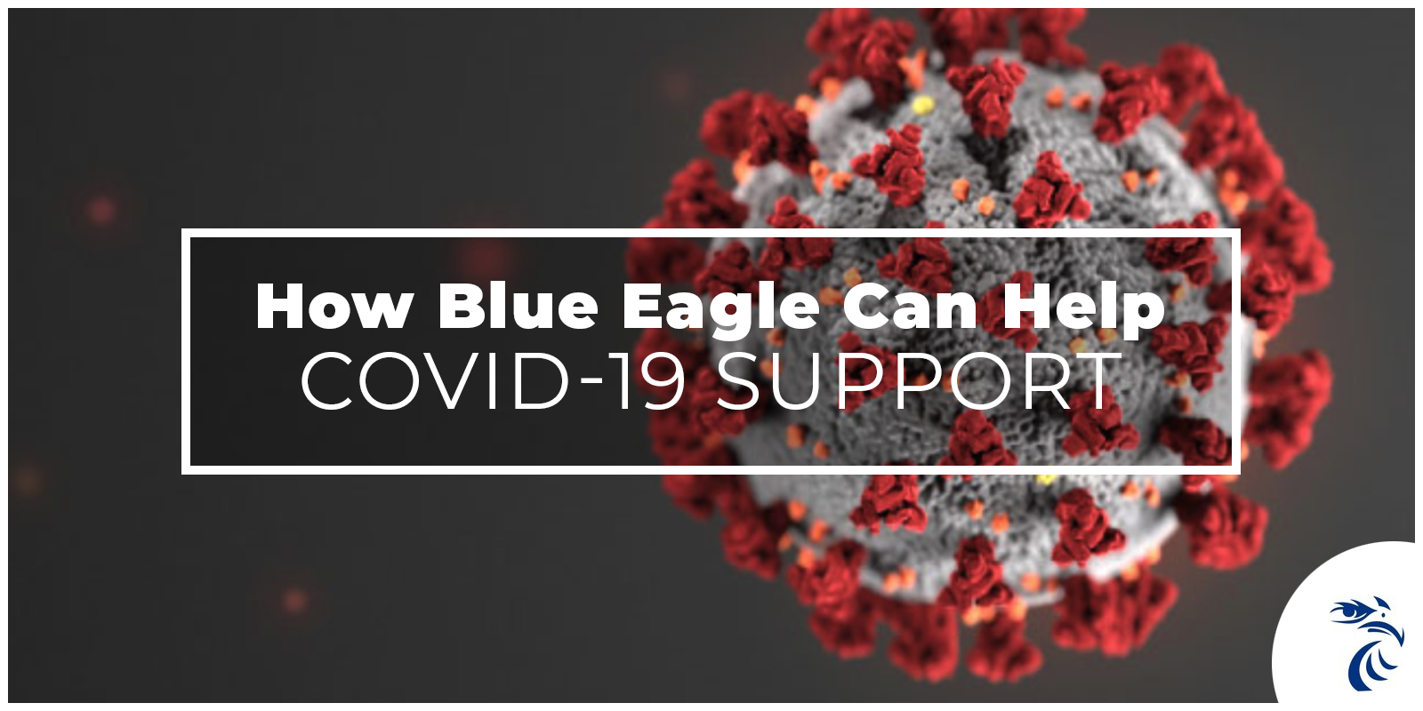 Picture of virus with text: How Blue Eagle Can Help: COVID-19 Support